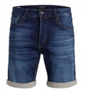 Jack & Jones Ss19 Jjirick Jjicon Shorts Ge 850 I.K. Sts