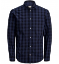 Jack & Jones Fw19 Jjegingham Shirt L/S Ps