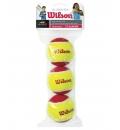 Wilson Μπαλάκια Tennis Fw19 Wrt137001 Starter Red Tball 3 Pack WRT137001
