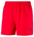 Puma Ss19 Ess+ Summer Shorts Cat