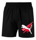 Puma Ss19 Ess+ Summer Shorts Graphic