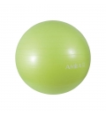 Amila Μπάλα Γυμναστικής Fw19 Μπάλα Γυμναστικής 75Cm 1800Gr - Πράσινη - Σε 48416