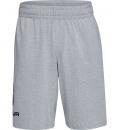 Under Armour Ss21 Cotton Big Logo Shorts