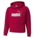 Puma Fw21 Ess+ Logo Cropped Hoodie Tr G