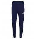 Puma Fw21 Ess Slim Pants Fl