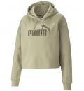 Puma Fw21 Ess Cropped Logo Hoodie Fl